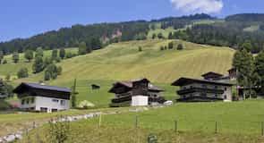 Khu nghỉ dưỡng có trượt tuyết Saalbach-Hinterglemm