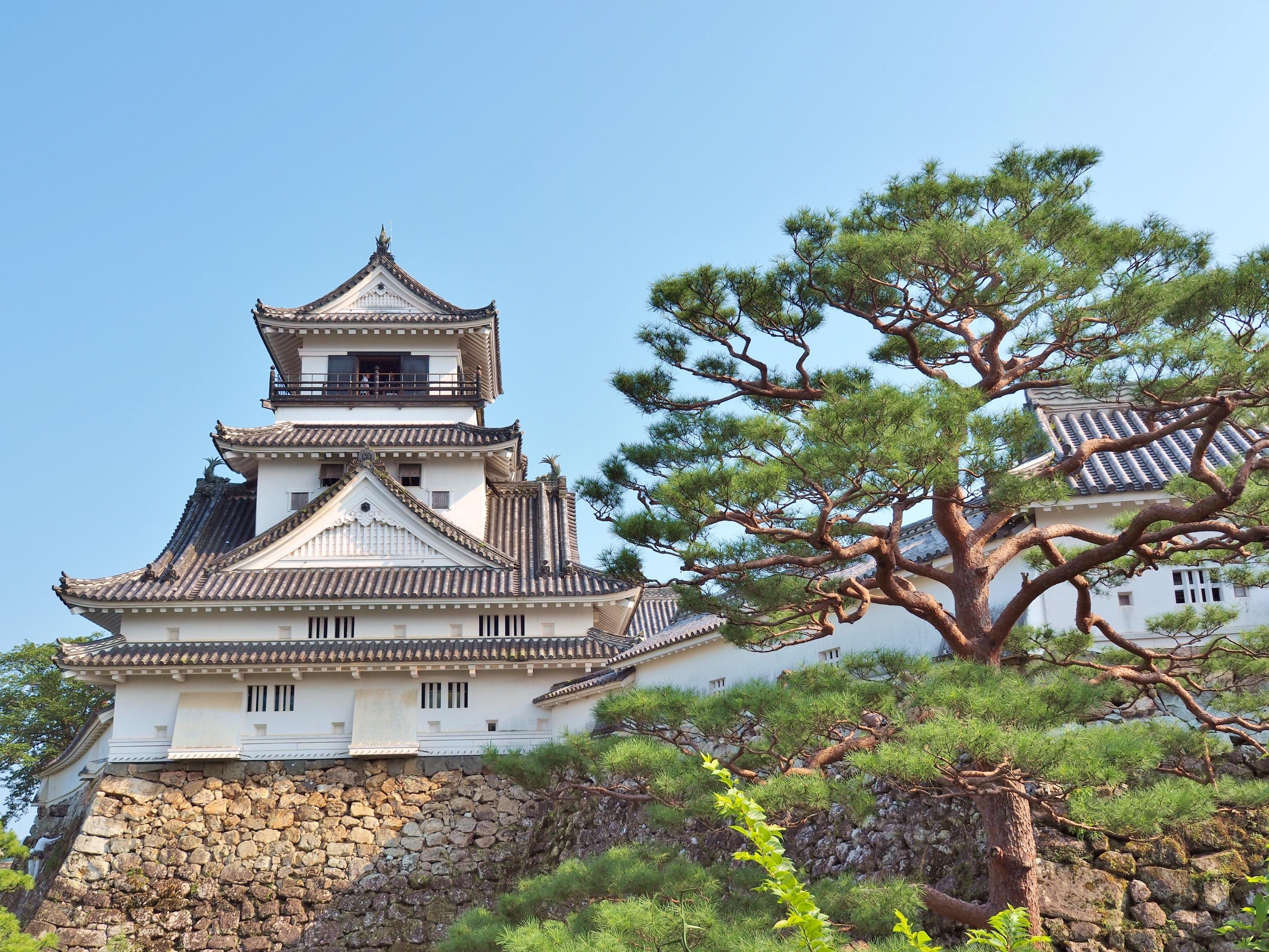 Burg Kōchi, Kochi, Präfektur Kochi, Japan