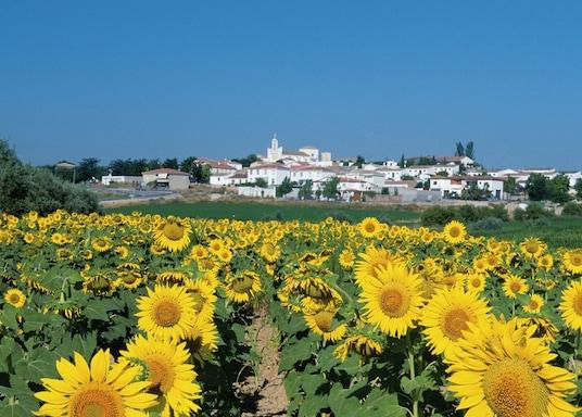 Murcia, Spania