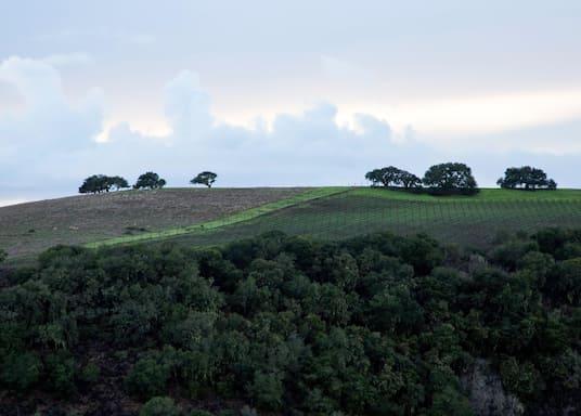 卡梅爾谷, 加利福尼亞, 美國