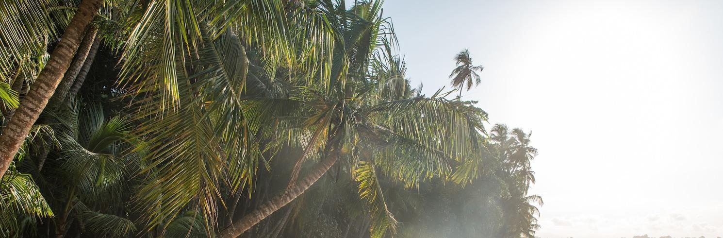 Den karibiske kysten, Costa Rica