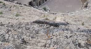 Teatro de Hierápolis
