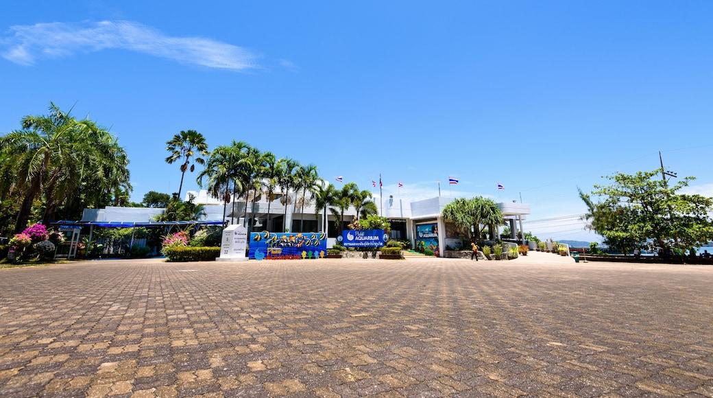 布吉島水族館