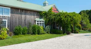 Cape May Winery (vingård)