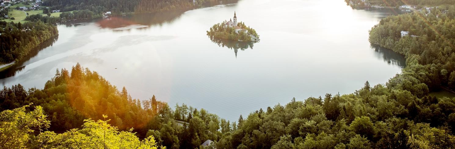 Бохинь, Словения