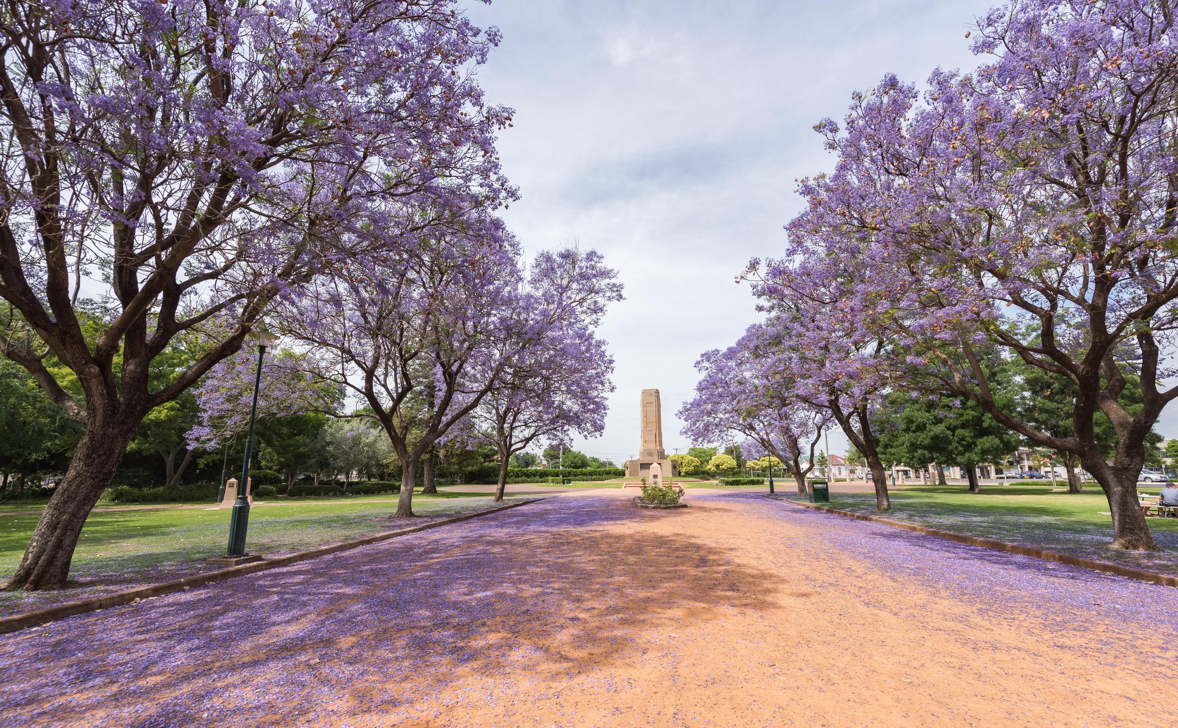 Dubbo, Nouvelle-Galles-du-Sud, Australie