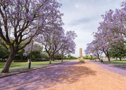 Dubbo, New South Wales, Australia