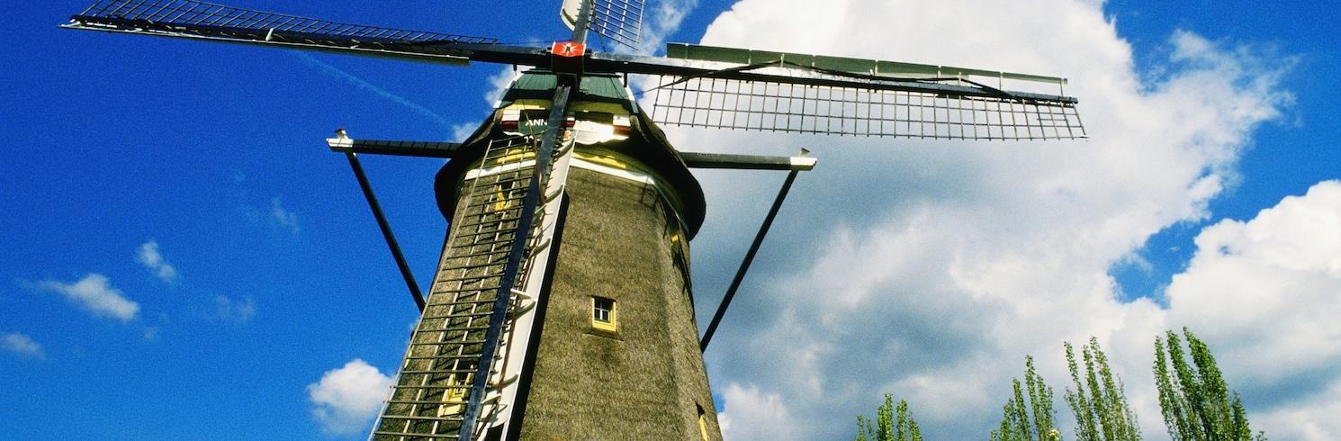 Leidenas, Nyderlandai