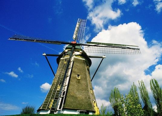 來登, 荷蘭