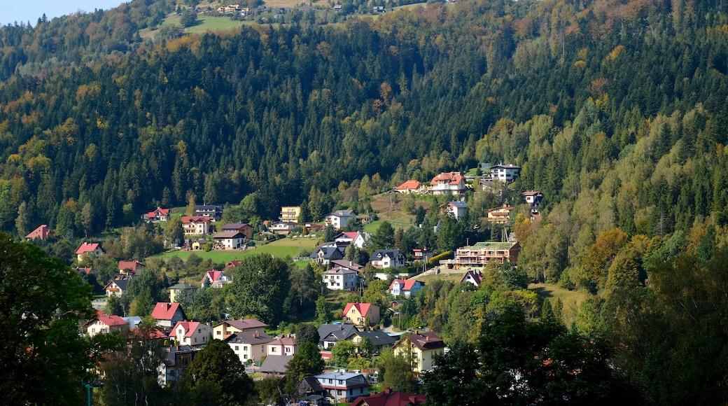 Silesian Voivodeship