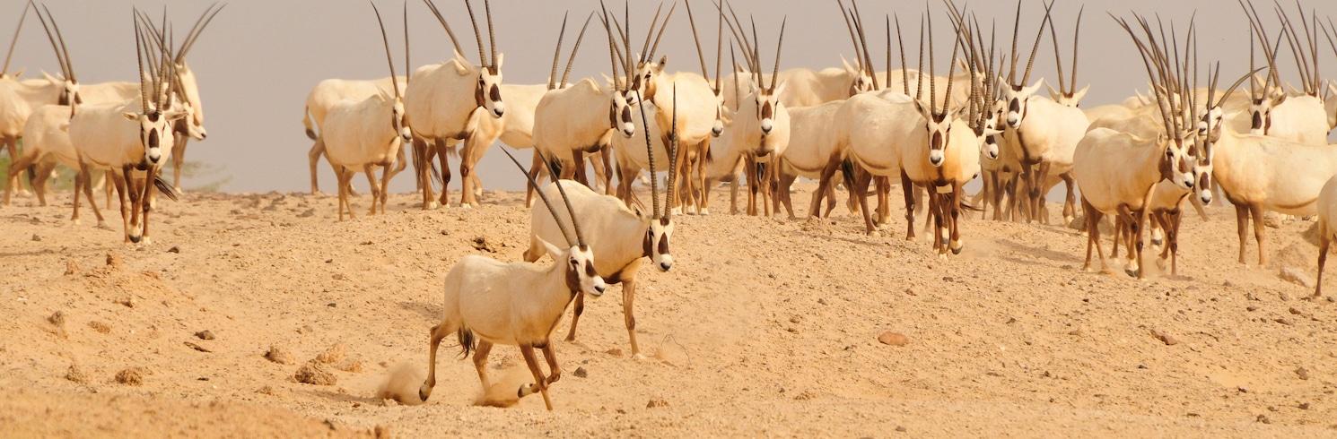 Sīr Banī Jāsas sala, Apvienotie Arābu Emirāti