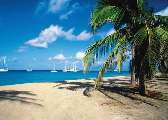 Cotton Ground, St. Kitts y Nevis