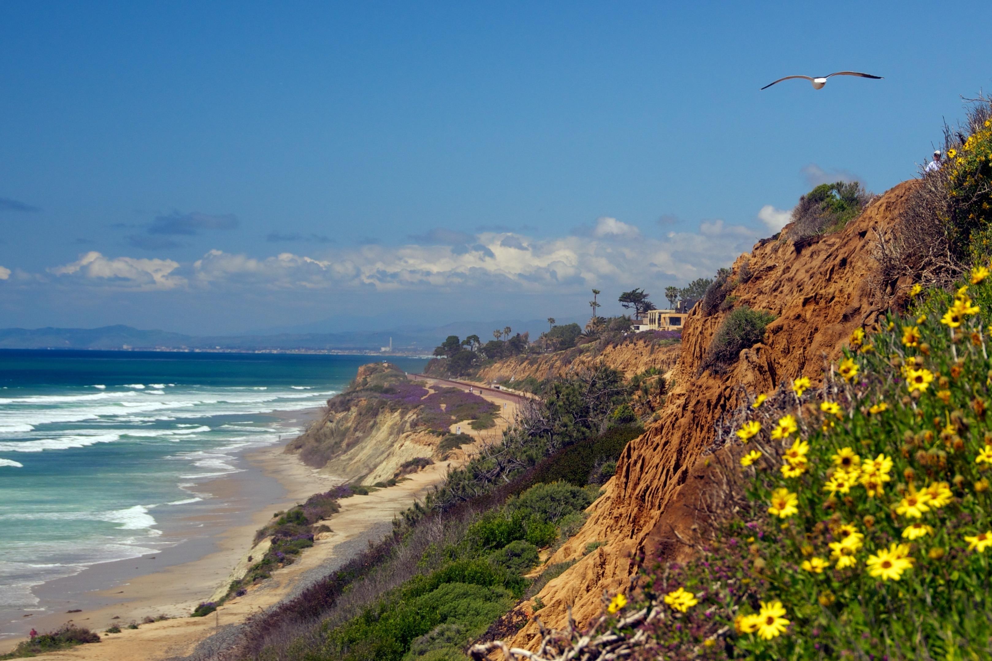 Del Mar Beach, Del Mar, California, United States of America