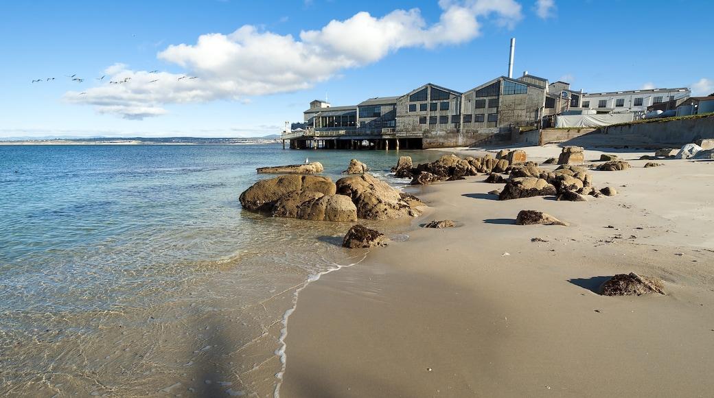 Baía de Monterey