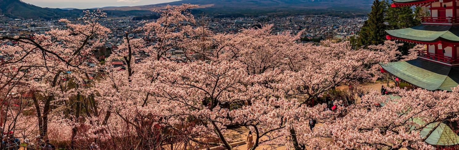 Kawaguchi, Japani