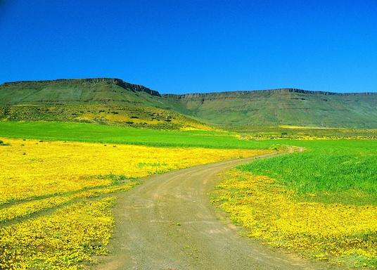 Cabo West Coast, Sudáfrica