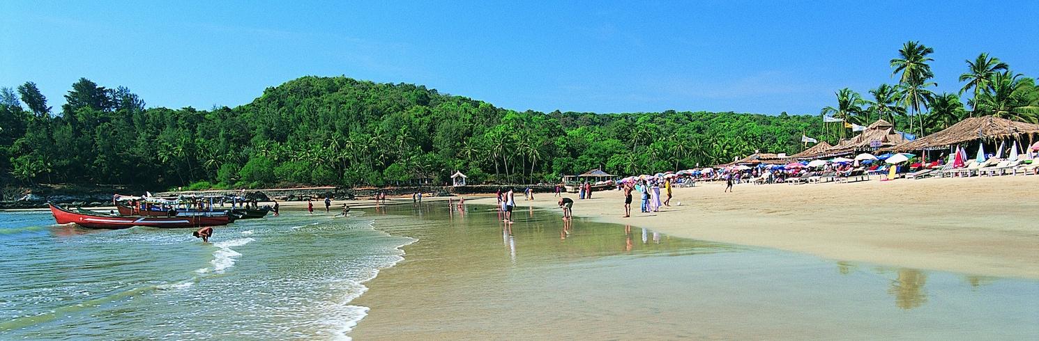 Baga, Ấn Độ