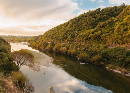 Palmerston North Şehri, Yeni Zelanda