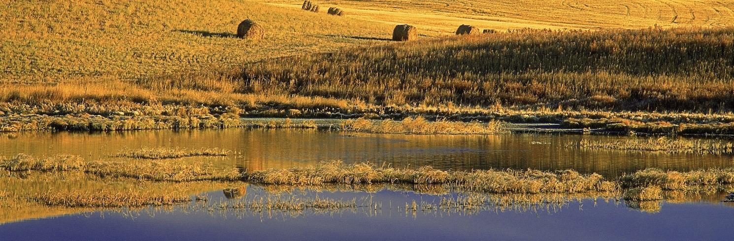 Estevan, Saskatchewan, Kanada
