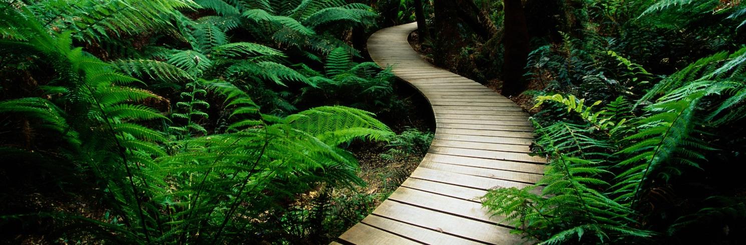 Cape Otway, Victoria, Australia
