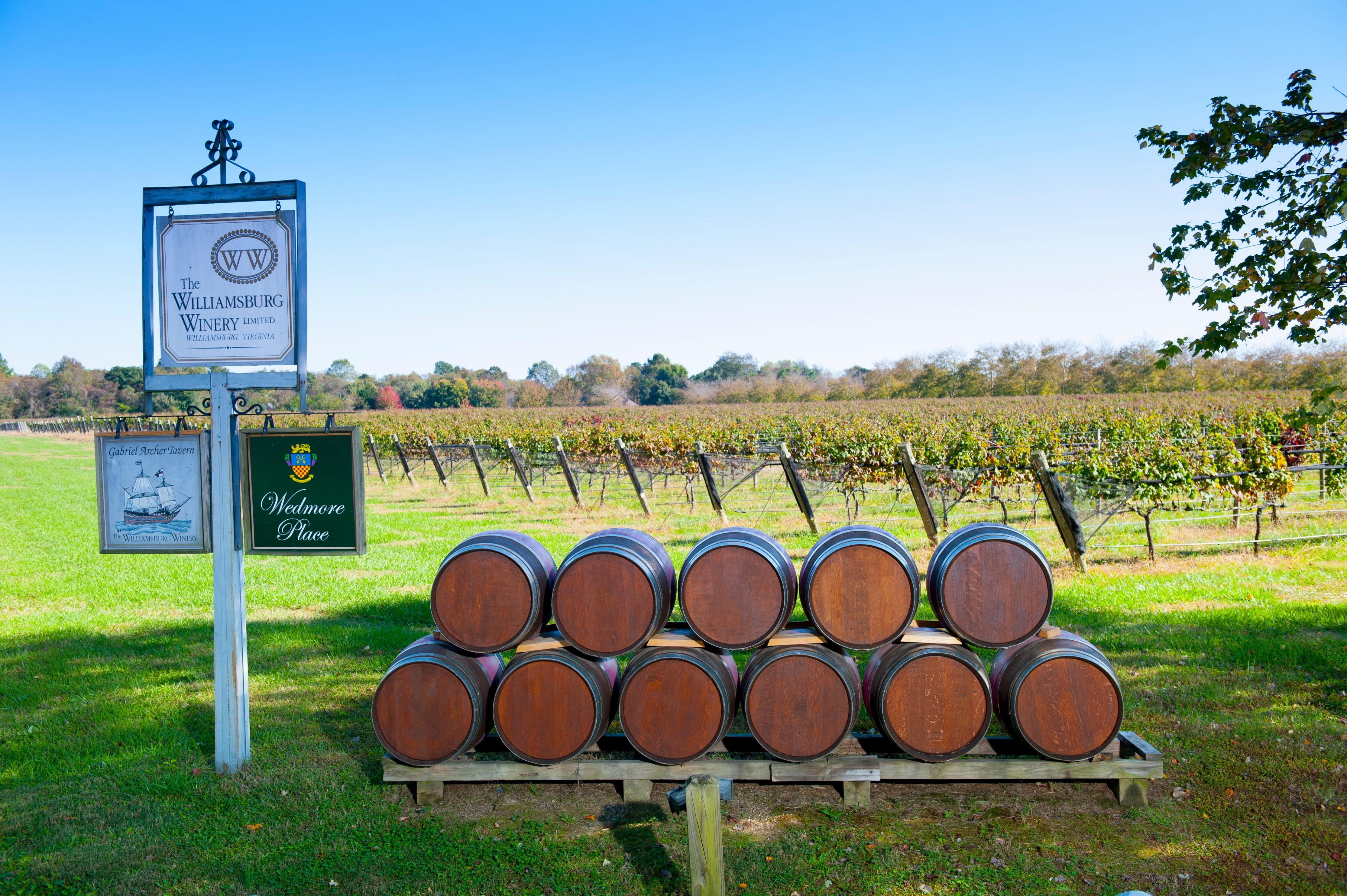 You can enjoy a tasting or tour at Williamsburg Winery during your travels to Williamsburg. Amble around this family-friendly area's picturesque gardens or attend a sporting event.
