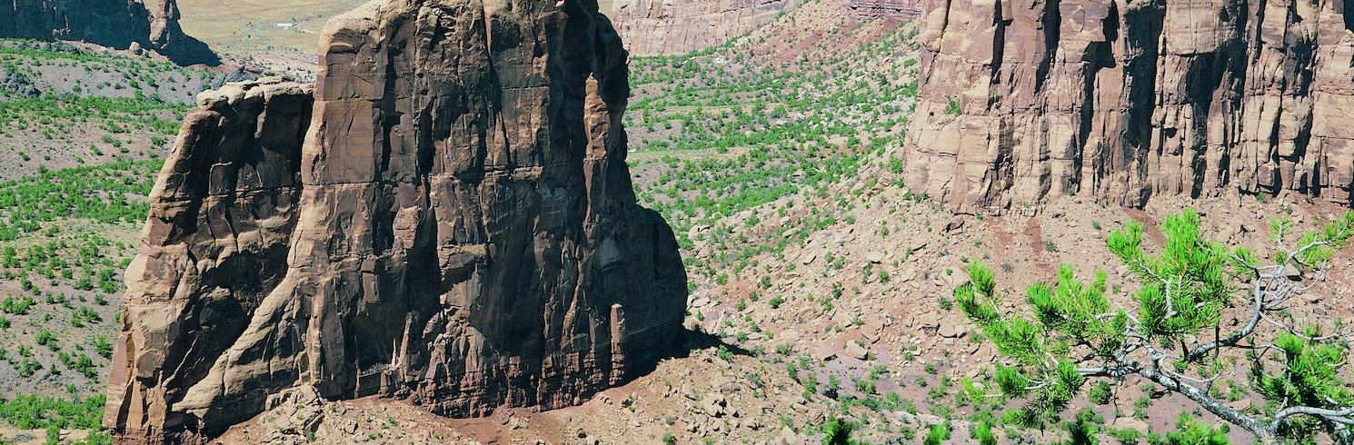 Pleasant View, Colorado, États-Unis d'Amérique