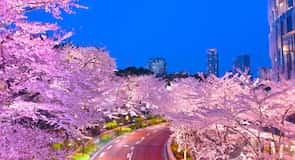 Akasaka (Štvrť v Tokiu)