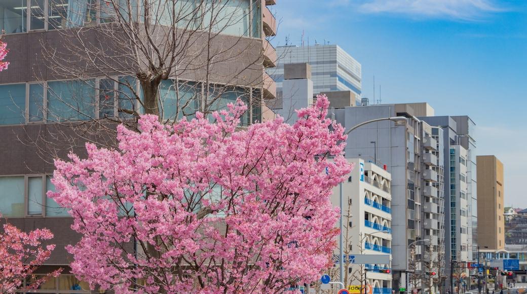 Shin-Yokohama