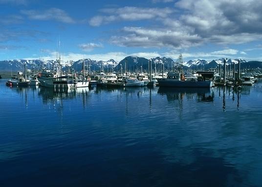 אלסקה, ארצות הברית