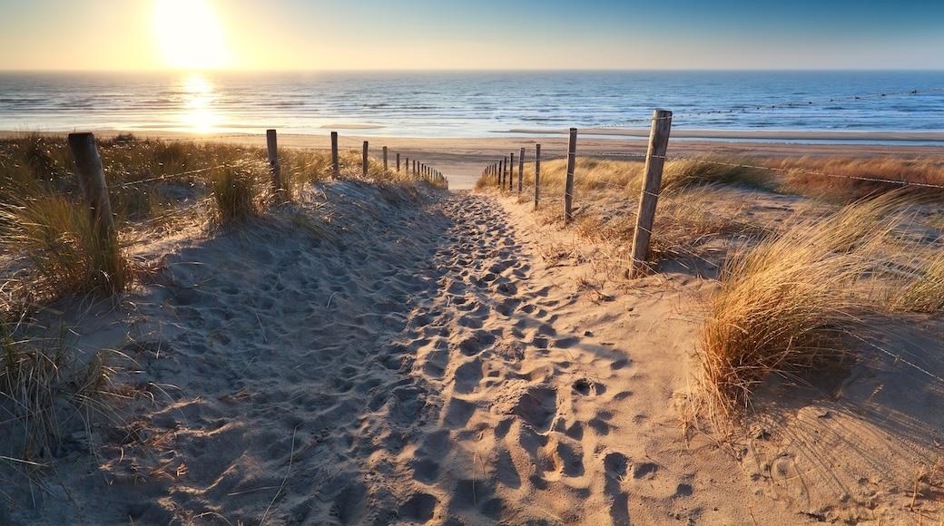 Zandvoortin uimaranta