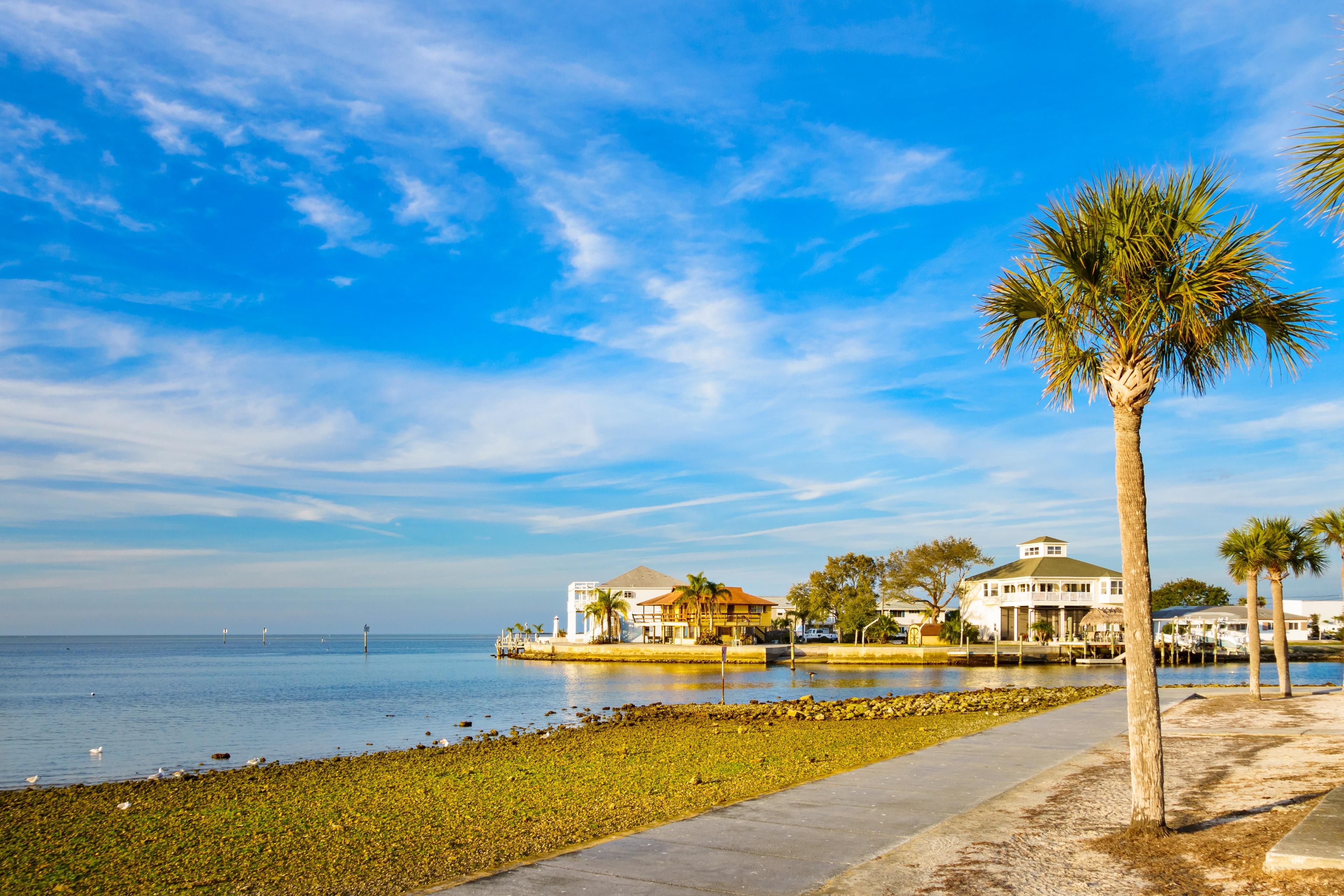 New Port Richey, Florida, United States of America