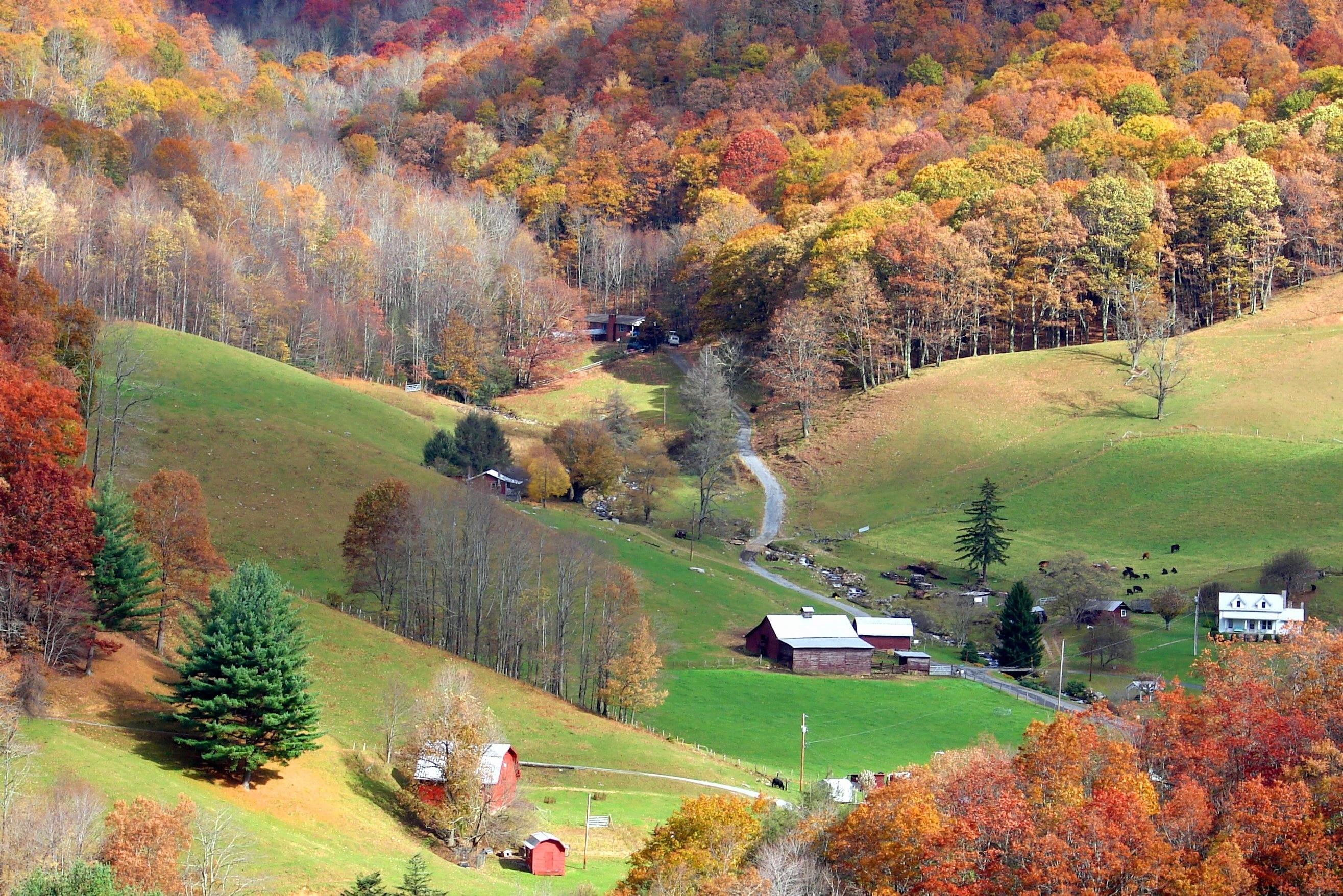 Ivy Hill, North Carolina, United States of America