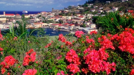 Reserve Ca 218 Cheap Flight Tickets To Grenada 2021 Expedia Ca