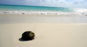 Plaja del Karmenas