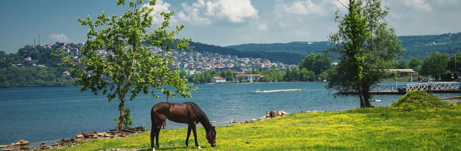 南部馬爾馬拉海 (地區), 土耳其