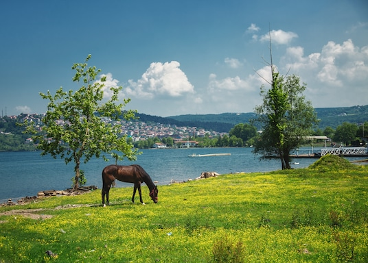 Southern Marmara (area), Turkey