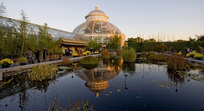 Ogród botaniczny w Nowym Jorku