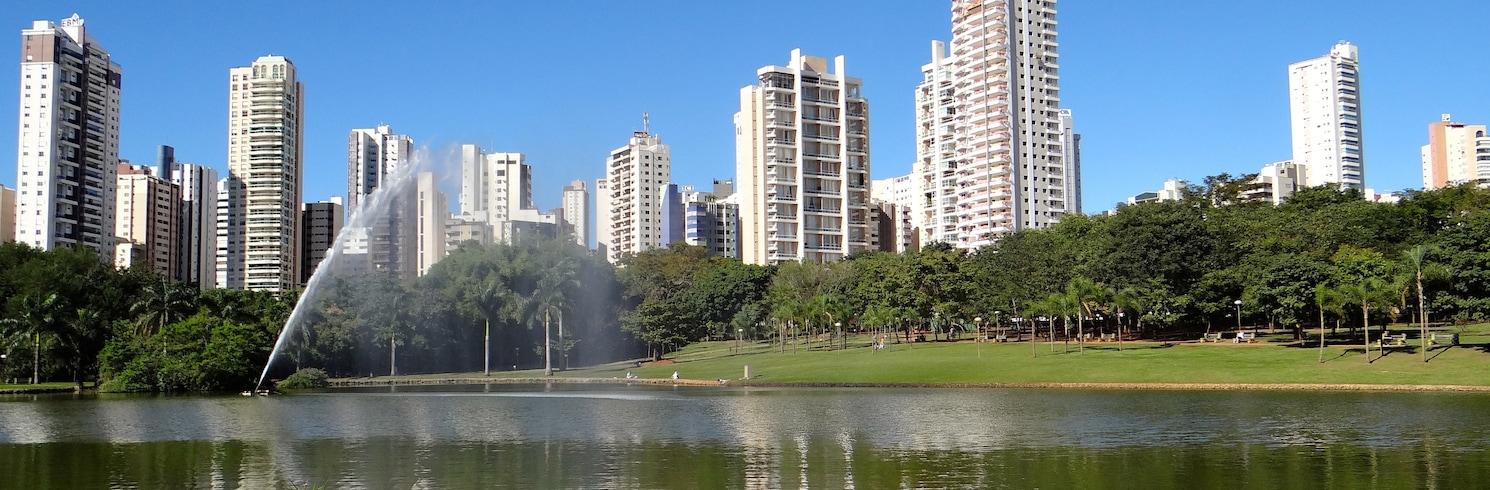 غويِنا, البرازيل