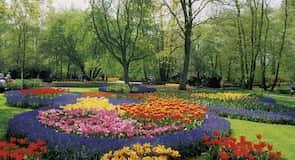 สวน Keukenhof