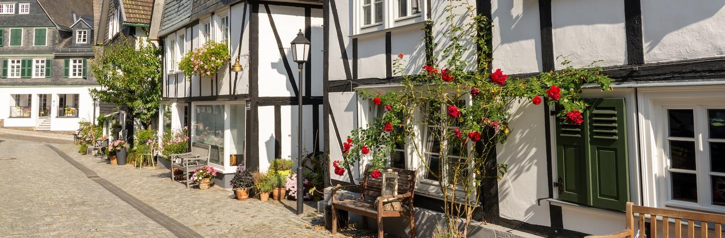 Freudenberg, Vokietija