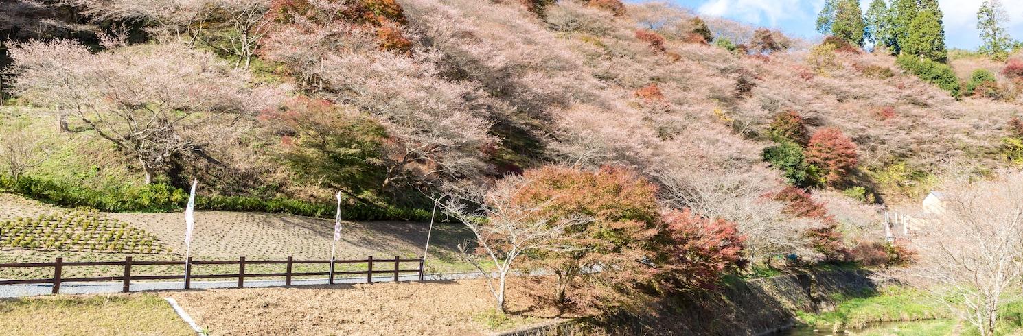 Yamagata (wilayah), Jepun