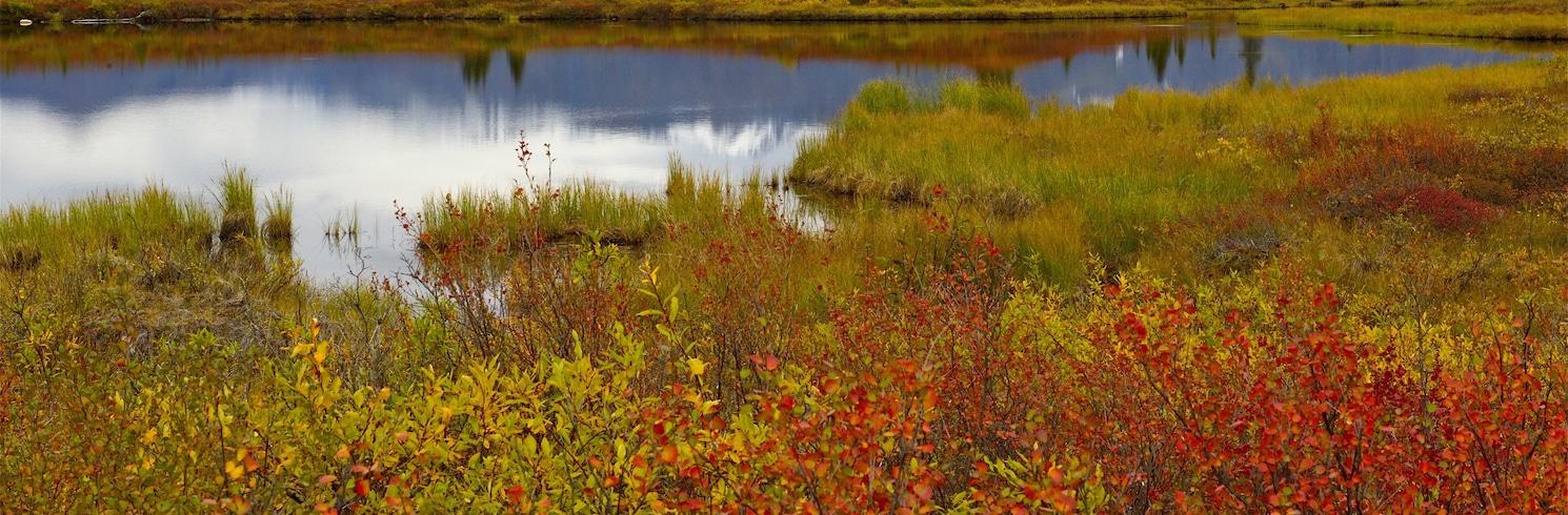 McKinley Park, Alaska, Birleşik Devletler
