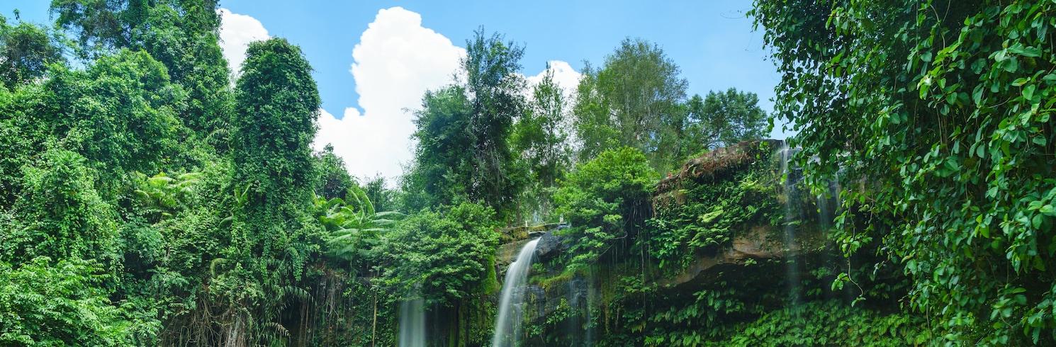 Svay Leu, Kambodzsa