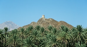 Форт Nizwa