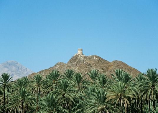内地省, 阿曼