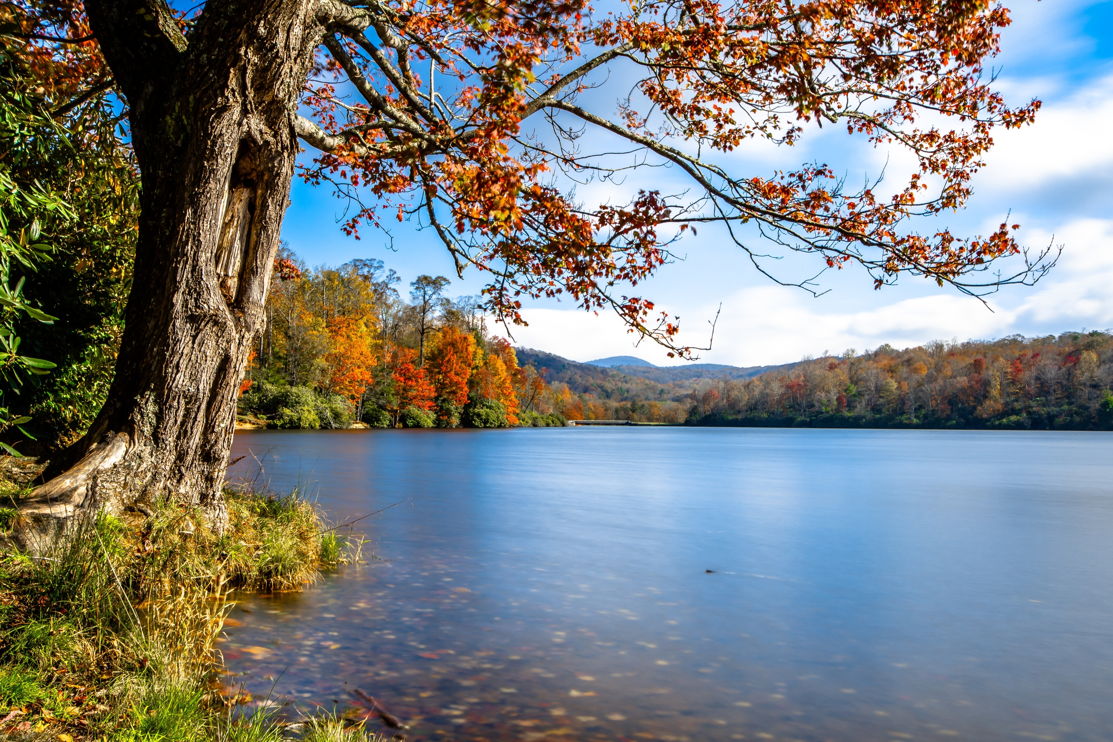 Watauga County, North Carolina, United States of America