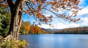 Price-tó