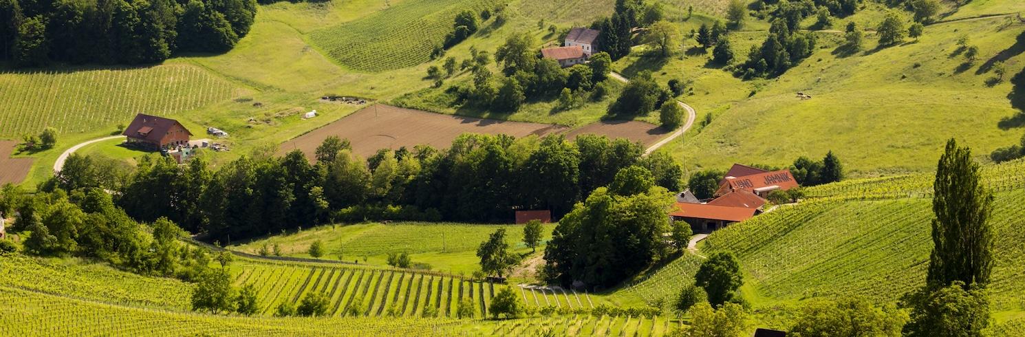 Нойнкирхен, Австрия