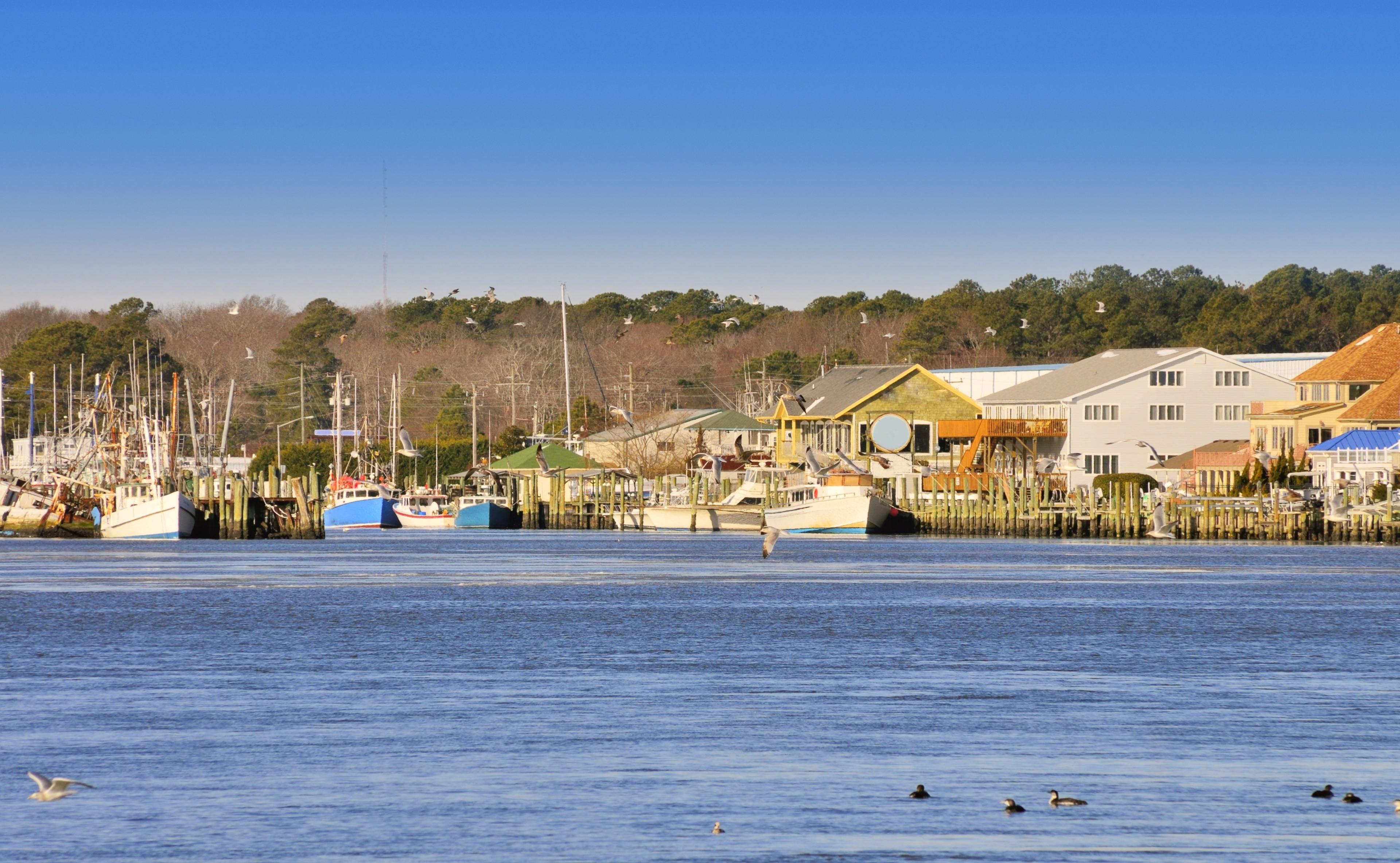 Ocean City Harbor, Ocean City, Maryland, Verenigde Staten