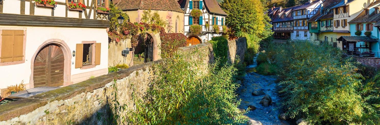 Alsace Şarap Yolu, Fransa